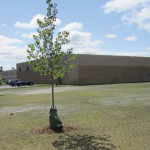 Plunkett's Pest Control - Fridley, MN